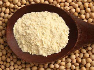 Ilustrasi bungkil kacang kedelai