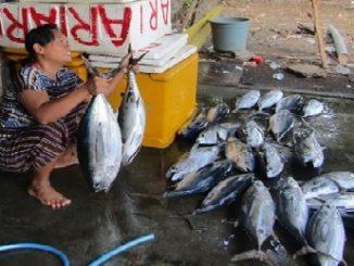 Foto jual ikan yang dibuat Ketut Milantini, seorang ibu rumah tangga Desa Les, Buleleng.